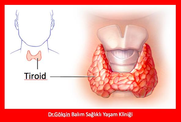 Neden tiroid hormonu için kan testi yaptırmam gerekiyor